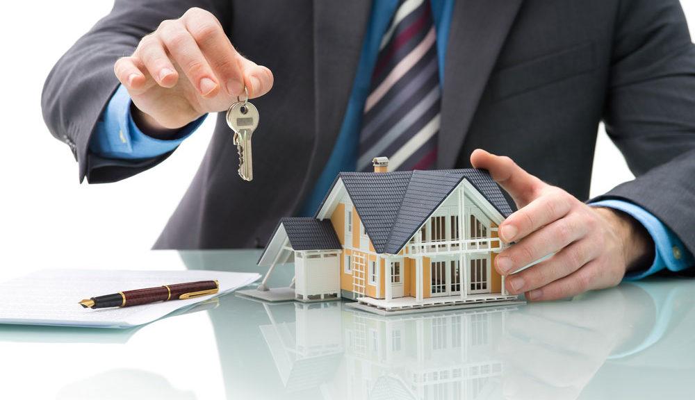 vente maison agence bois
